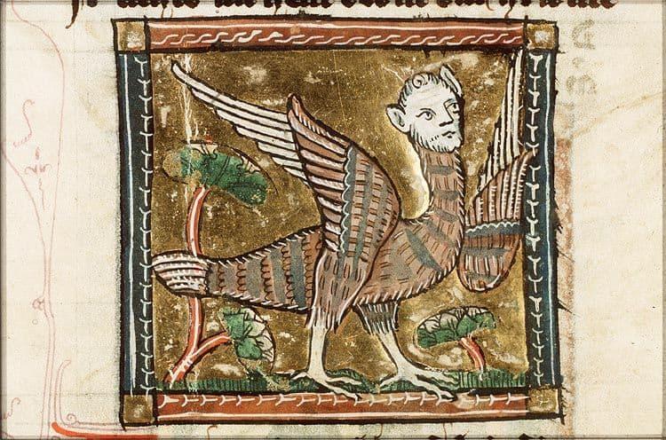 Arpía medieval