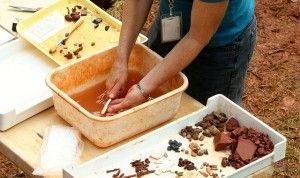 excavacion restos ceramica