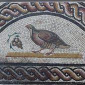 Mosaico Perdiz. Saint Romain-en-Gal